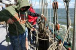 Thumbnail 3 of Tying knots