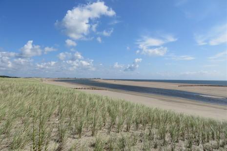 Nationalpark Dünen von Texel