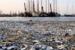 Miniaturansicht 6 von Jugendwoche Veluwerandmeeren