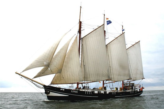 Tall Ships Race in Harlingen