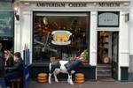 Kleine afbeelding 10 van Jeugdweek Amsterdam