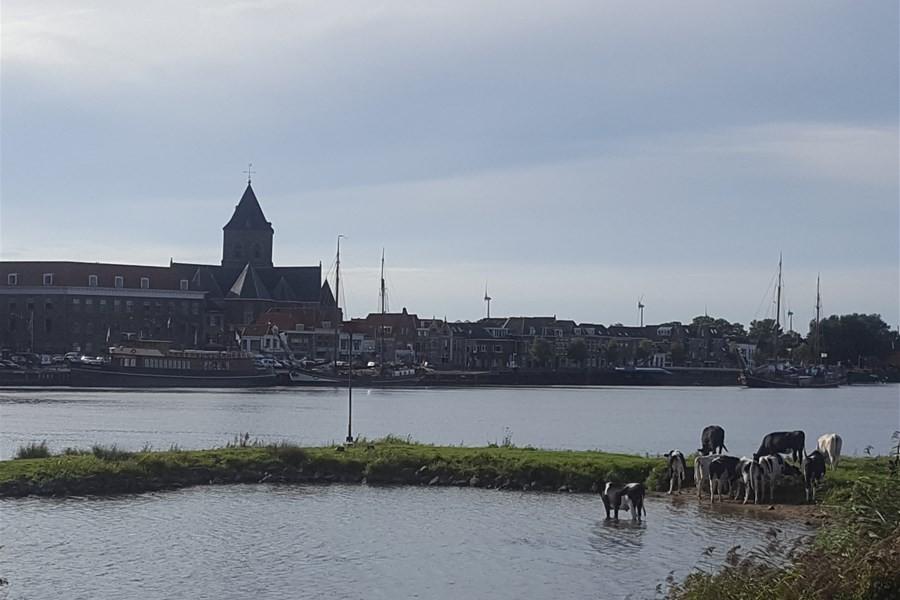 Detailafbeelding van Dagtocht naar Kampen
