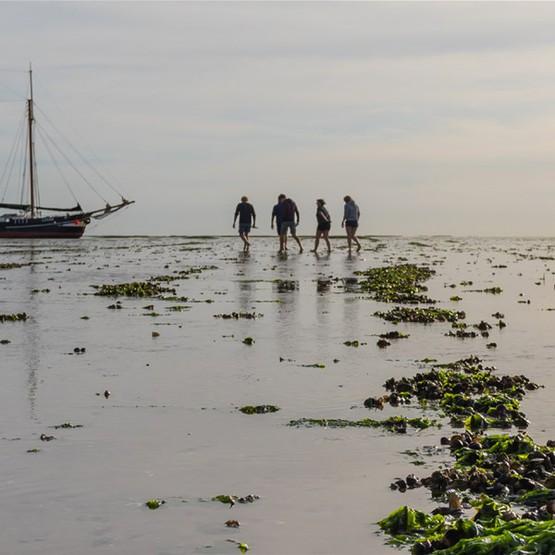 Vijf remote plekken in Nederland die je alleen met een schip kunt ontdekken