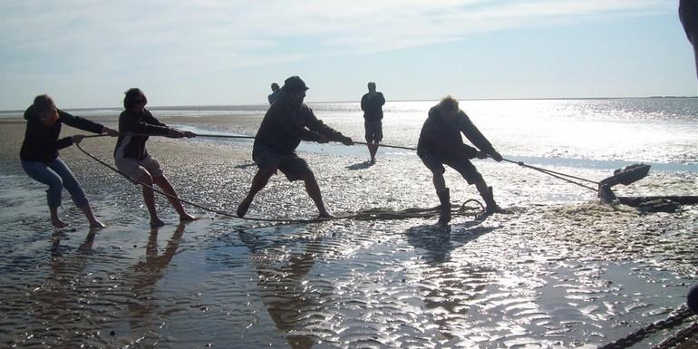 Schulreise zum Wattenmeer