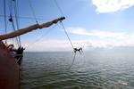 Miniaturansicht 8 von Kurzwoche auf den Friesischen Seen