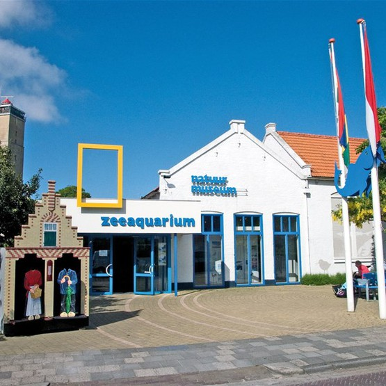 Nature Museum and Sea Aquarium