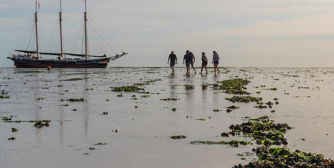 Fünf besondere Orte in den Niederlanden, die man nur mit einem Schiff entdecken kann
