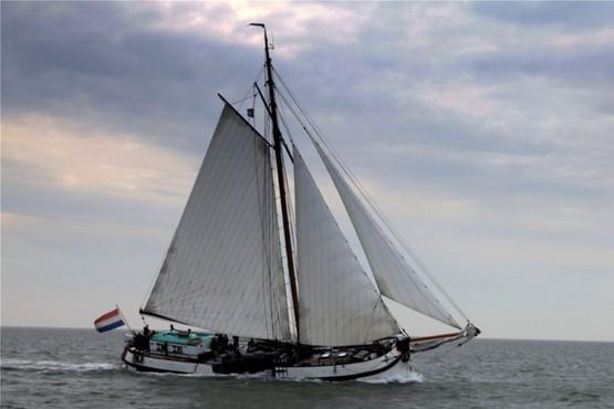 Sail Kampen 2022