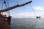 Miniaturansicht 15 von Wochenausflug auf den friesischen Seen